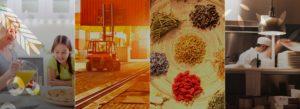 Nutrimental - Mercados de Atuação