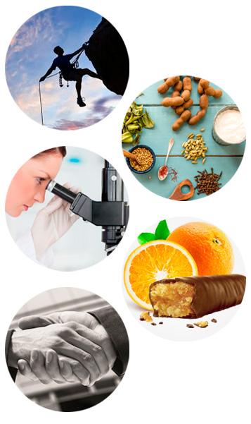 Nossa Essência  - Nutrimental
