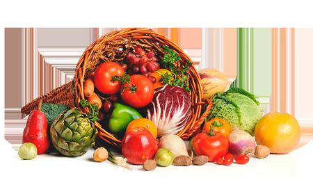 Food Ingredients -Nutropi