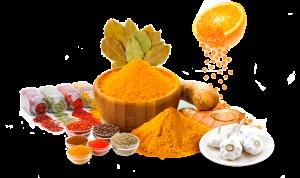 Food Ingredients - Receitas