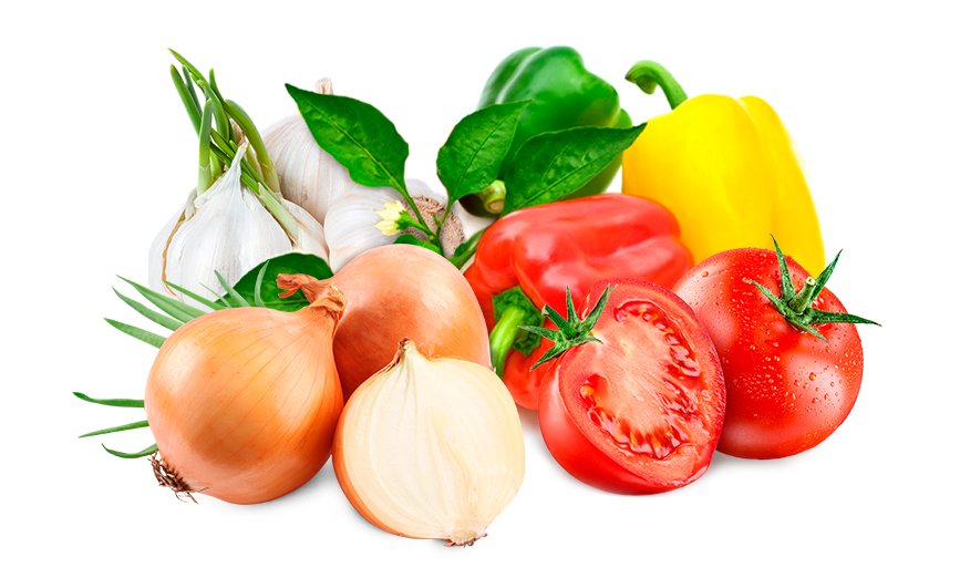 Segmentos de Negócio - Food Ingredients