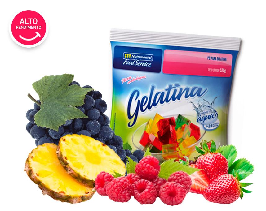 Food Service - Gelatina