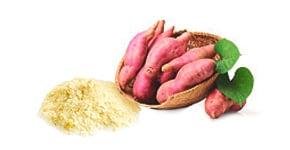 Batata Doce Flocos - Food Ingredients