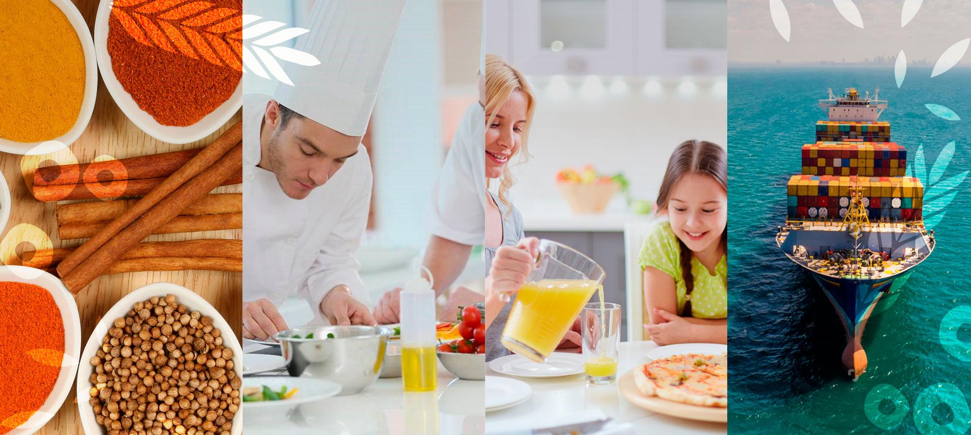 Segmentos de Negócio - Nutrimental