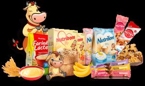 Nutrimental - Segmentos de Negócio