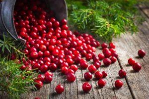 cranberry-nutrimental-super-frutas-para-a-sua-saude